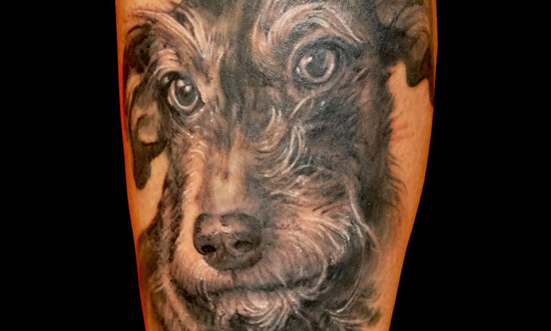 00016 dog elisatattoo